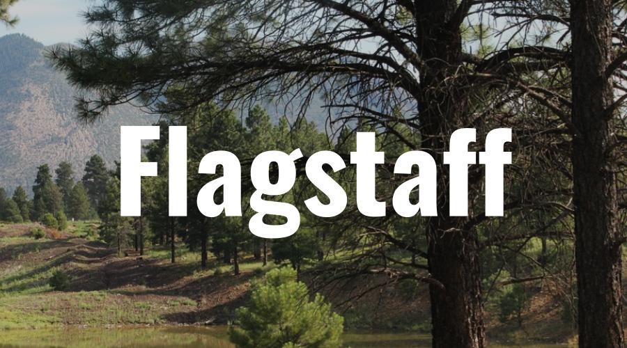 Flagstaff Arizona The Lifey App